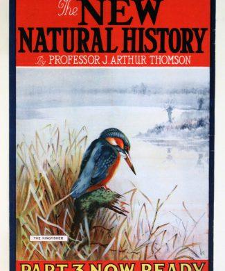 New-Natural-History