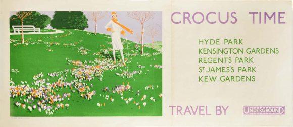 crocus time